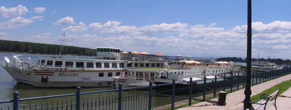 река Дунав, Видин, България